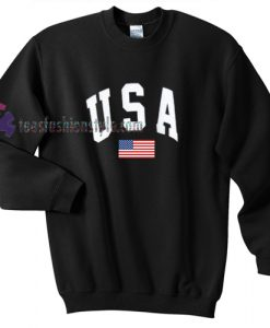 USA Flag simple t shirt
